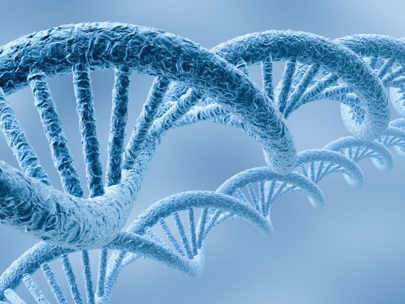 A genética das emoções