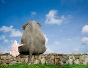 Fala com um elefante papai
