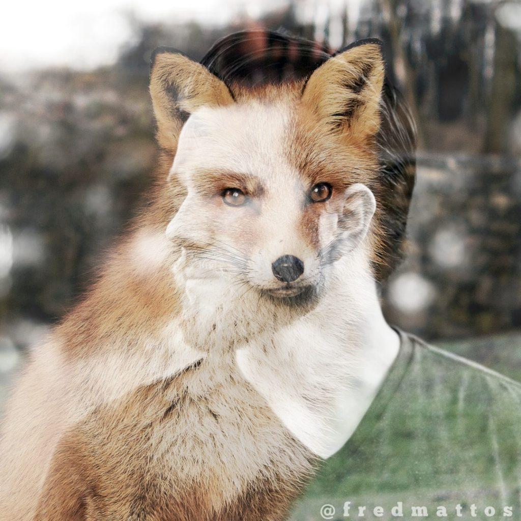H certa primitividade em ns que age como uma raposahellip